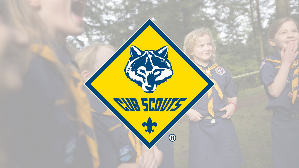 Sycamore District Cub Outing